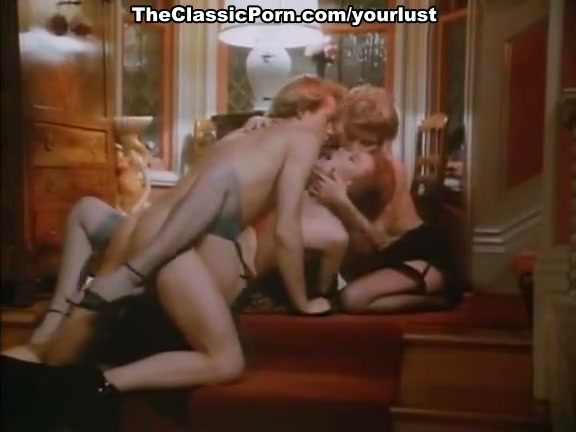 Hot vintage porn clip featuring hot chicks like Gina Gianetti and Jacqueline